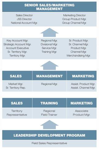 TTi's Field Sales Representative career path flowchart